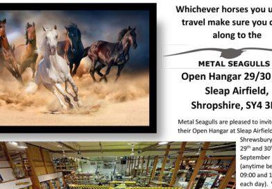 Metal Seagulls Open Hangar 2018
